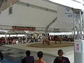 わんぱく相撲東京都大会